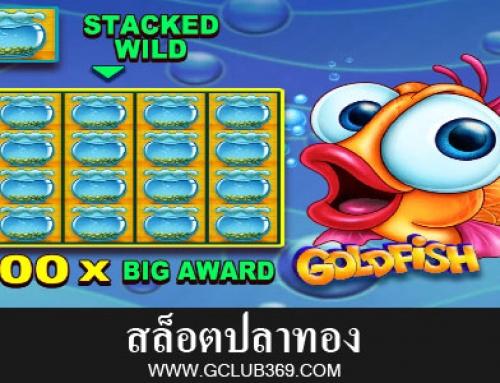 คู่มือ การเล่นสล็อตปลาทอง+สูตรปั่นให้ได้เงิน!