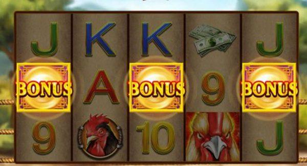 Free spins bonus cock fight